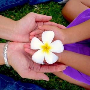 <span>Dayz with 3 KEIKI</span> 学校も住む場所も決めずにスタートした、ハワイの新生活