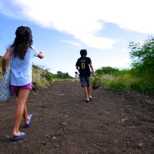 <span>Dayz with 3 KEIKI</span> ハワイローカルの初詣!? ビーサンでハイキング♪なお正月