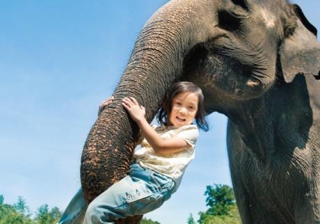 連休どうする? 親子で行きたい「動物とふれあえるスポット」【まとめ】