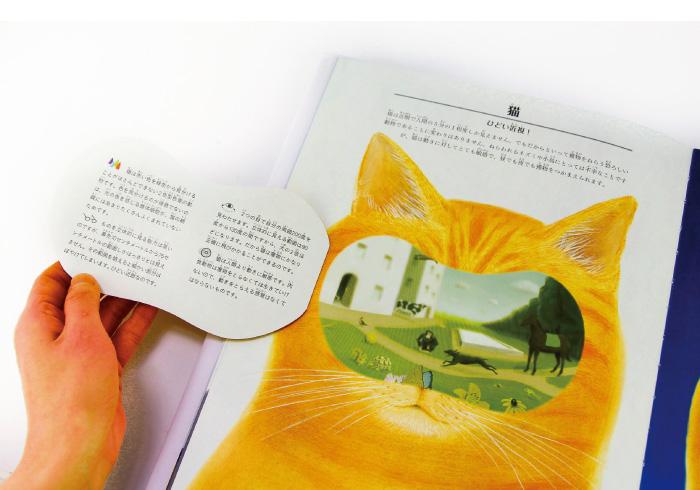 子どもの科学する心を育てたい。おすすめの科学絵本9冊