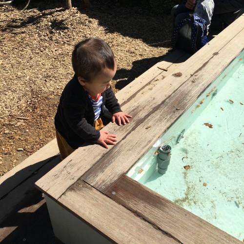 たくさんの親子連れで賑わっていた「あそびば」。水遊びが出来るプールもありました。
