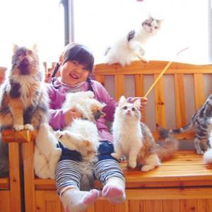 <span>動物特集 その3</span> ウサギやネコと気軽に遊べる。子どももOKの動物カフェ6店
