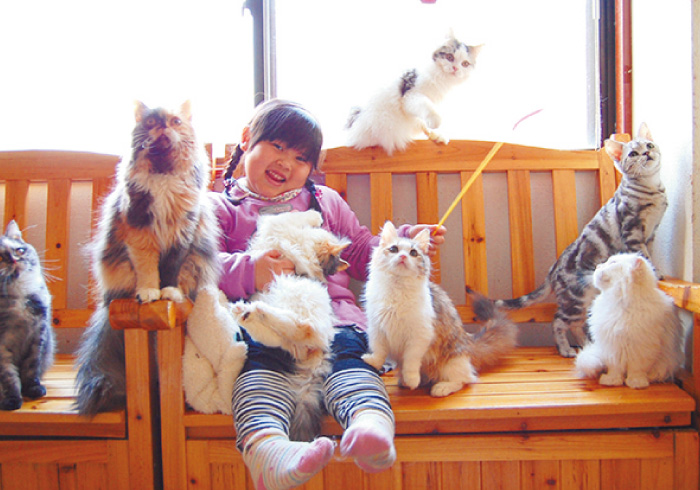 ウサギやネコと気軽に遊べる。子どももOKの動物カフェ6店