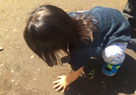 虫が苦手なママが、子どもの外遊びに付き合うときは?