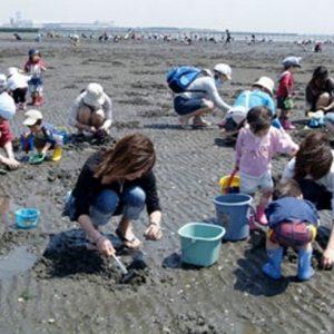 <span>おでかけニュース【千葉】</span> 週末にふらりと行ける、都心から一番近い潮干狩り