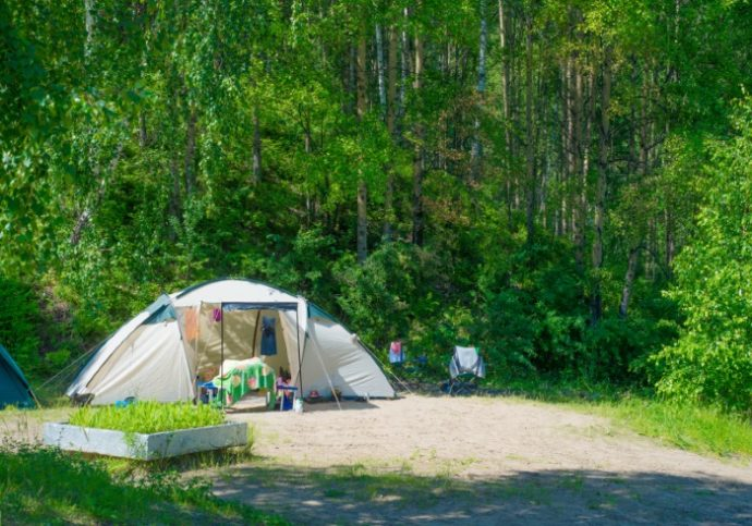 Campground in summer forest in Russia