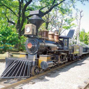 <span>公園特集5</span> 乗り物好きな子集まれ! 機関車に乗れる公園3つ