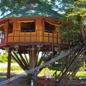 <span>北海道・十勝特集4</span> いつの日か宿泊したい! あこがれのツリーハウス