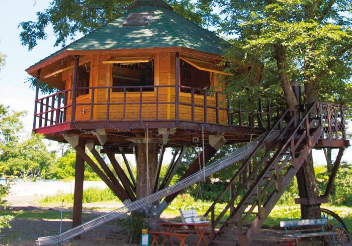 いつの日か宿泊したい! あこがれのツリーハウス