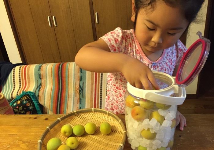 長女と一緒に梅しごとが楽しい。ヘアメイクのママの1日