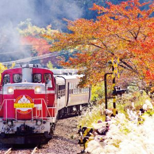 <span>秋の遠足特集・8</span> 電車好きキッズ大興奮! 特別な列車で行く秋の遠足