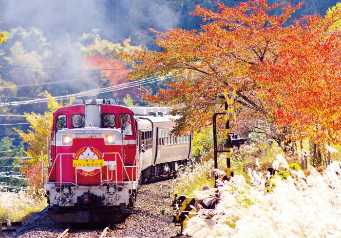 電車好きキッズ大興奮! 特別な列車で行く秋の遠足