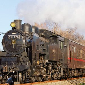 <span>秋の遠足特集・10</span> リアルなシュッシュポッポが聞ける! 蒸気機関車の日帰り旅