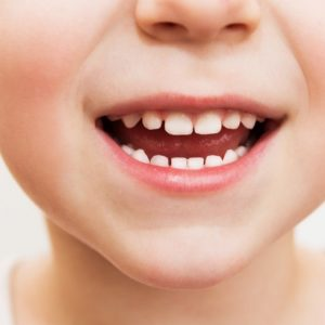 <span>いい歯の日・その2</span> 子どもの歯磨き習慣にプラスしたい、虫歯予防のアイテム