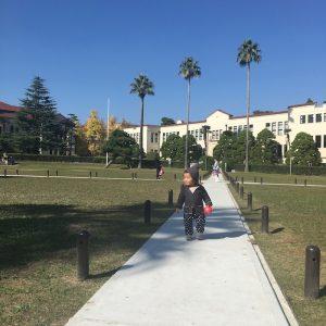 <span>関西子連れダイアリーvol.11</span> 週末が特におすすめ。大学構内の芝生広場で、子連れでのんびり、まったり