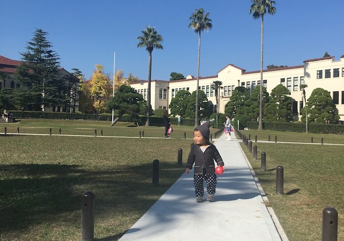 週末が特におすすめ。大学構内の芝生広場で、子連れでのんびり、まったり