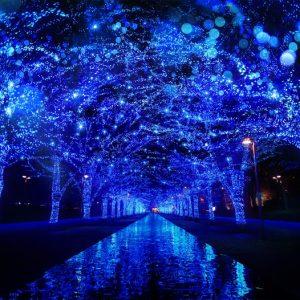 <span>おでかけニュース【スペシャル】</span> 渋谷の街を青く彩る、幻想的なイルミネーション