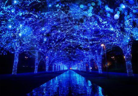 渋谷の街を青く彩る、幻想的なイルミネーション