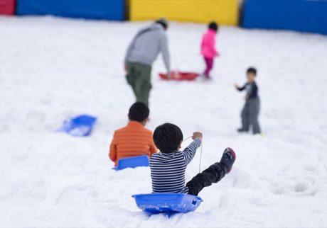 日帰りでたっぷり遊べる。都心近くで雪遊びを満喫!【親子のおでかけ・神奈川】