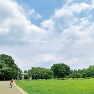<span>パパと行くから楽しい公園・7</span> 晴れたらピクニックに出かけよう! 子連れの定番。広大な芝生がある公園【保存版】