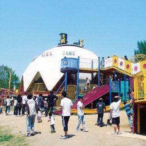 <span>パパと行くから楽しい公園・3</span> 【保存版】千葉・埼玉の大型遊具&アスレチックのある公園