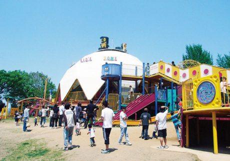 【保存版】千葉・埼玉の大型遊具&アスレチックのある公園