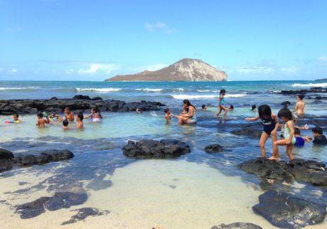 赤ちゃんから大人まで。誰もが遊べるハワイの超ローカルビーチ