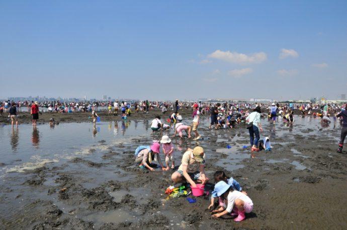 webふなばし三番瀬海浜公園潮干狩り