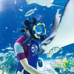 <span>水族館特集6</span> ダイバーと魚たちが華麗に泳ぐ。水族館の水中パフォーマンス