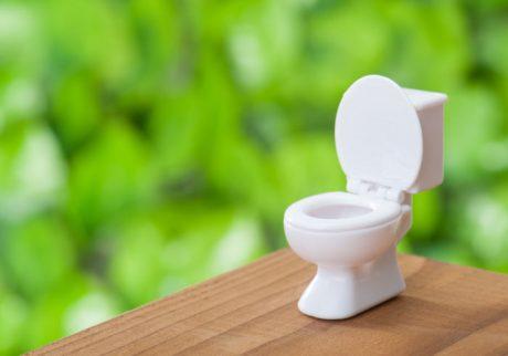 梅雨のトイレのモワッとしたニオイはどこから? 対策アイテム2選!
