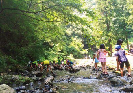 夏でもひんやり、川遊びが楽しい親子キャンプ【東京・神奈川/川辺のキャンプ場】