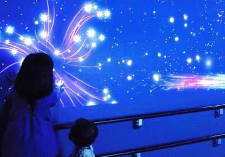 満天の星空と水族館の夢のコラボ! 夏の夜を楽しむ新江ノ島水族館「ナイトワンダーアクアリウム」へ