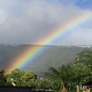 ハワイの公立校に入学。英語の壁はどうするの?【新連載・ハワイとコトバ】