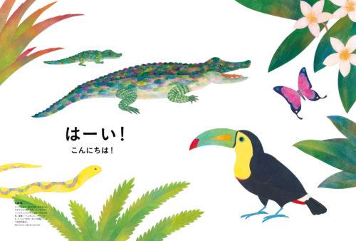 kakurenbo02