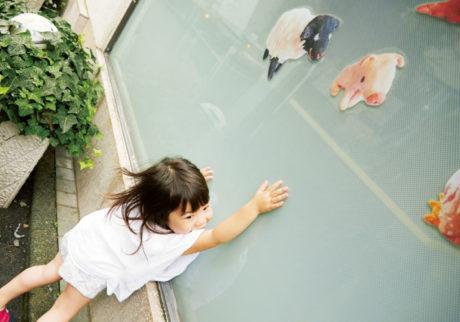 親子で遊ぼう! 散歩しながら「動物ハンティング」