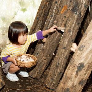 <span>秋の親子遠足特集・3</span> この秋体験したい、きのこ狩り&こんにゃく作り【秋の親子遠足特集】