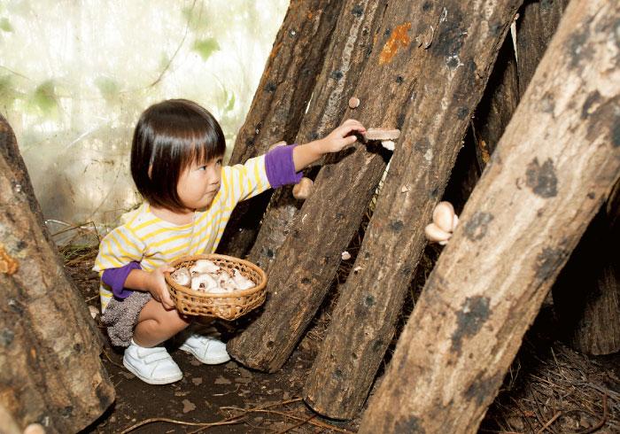 この秋体験したい、きのこ狩り&こんにゃく作り【秋の親子遠足特集】