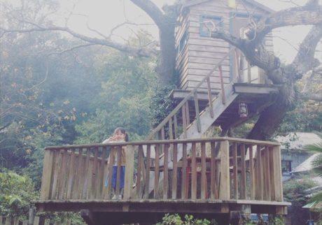 娘と同じ年齢のツリーハウスがお店のシンボル。「Akatsukicafe & something」yukkoさんの子育て