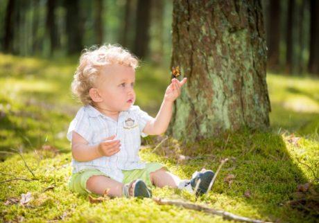 子どもが虫をつぶして遊ぶ。どうしたらいいですか?