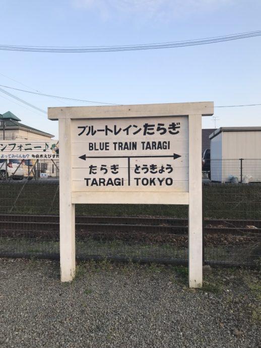 IMG_5326-1