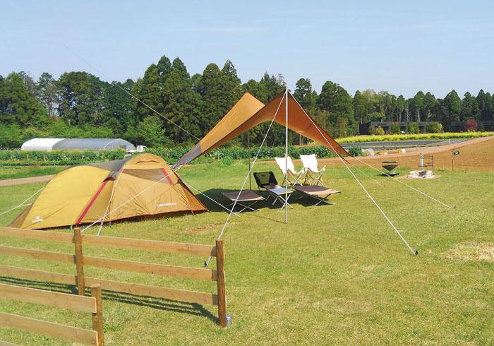 農園で収穫体験、高濃度の天然温泉。プラスアルファのお楽しみがあるキャンプ場