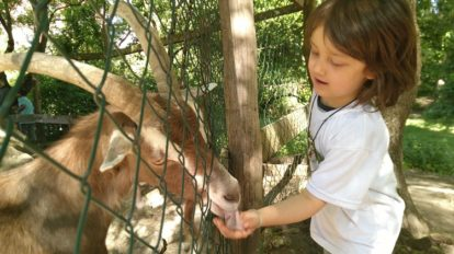 子どもは未来。ベルリンの公園で思うこと【日登美のオーガニック子育て@ベ …