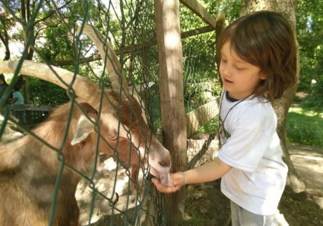 子どもは未来。ベルリンの公園で思うこと【日登美のオーガニック子育て@ベルリン】