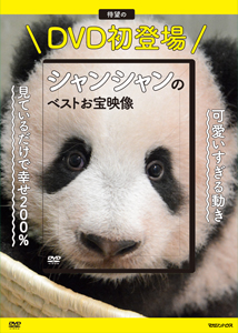DIP-DVDBOX1