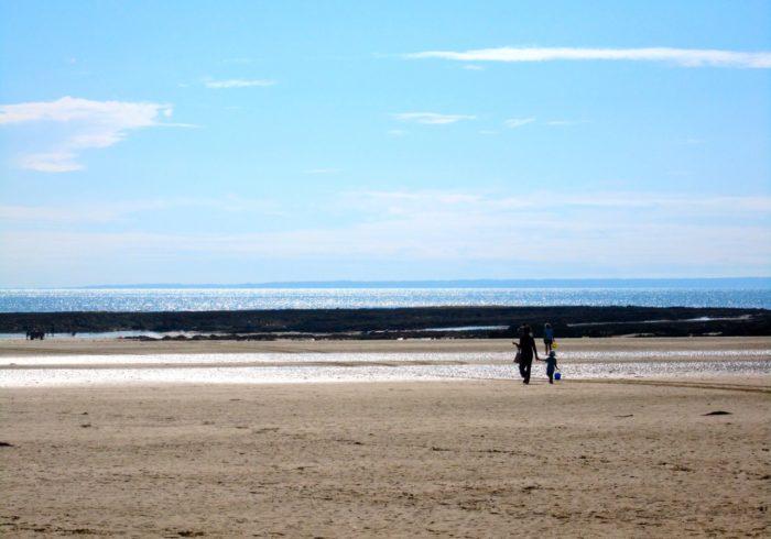 この夏も、たくさんの思い出を。海をイメージする絵本3冊