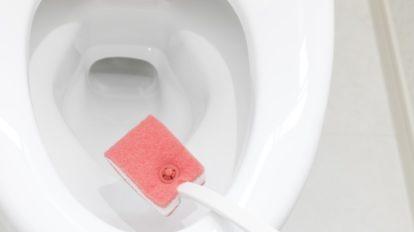 トイレ掃除は順番を間違えないで! プロが答える、よくある悩みQ&A