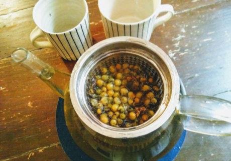 風邪はもちろん、体を整えるのに重宝する、フェンネル茶の作り方【日登美のオーガニック子育て@ベルリン】