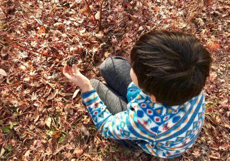 絵本の中で、落ち葉集めと木の実拾い【Anneママの『絵本とボクと、ときどきパパ』】