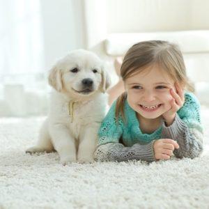 <span>ママのためのカウンセリングルーム・70</span> 子どもが犬にかまれてしまった!飼い主に賠償義務はあるの?【弁護士・宮地先生に聞きました】