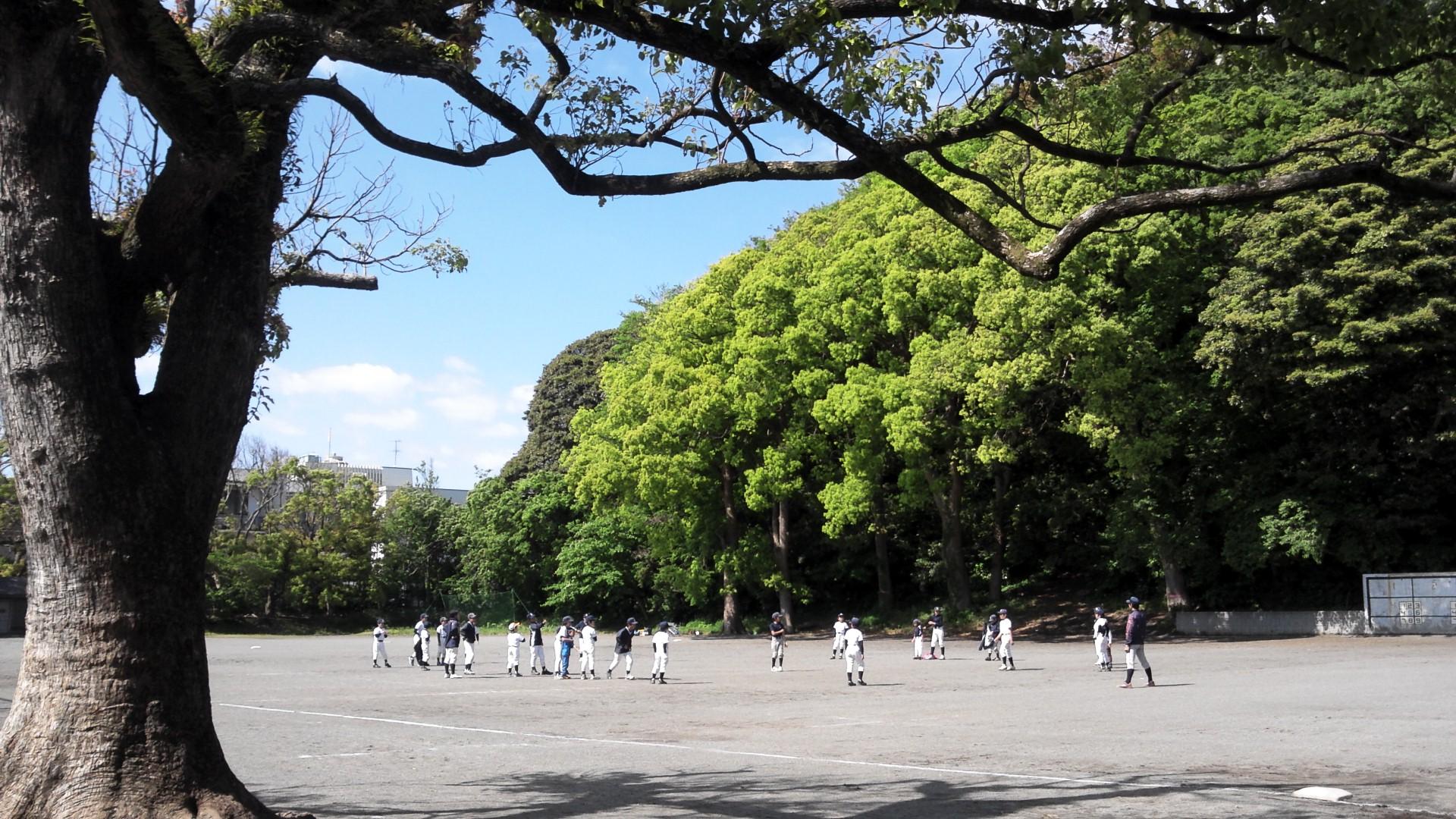 main_ground